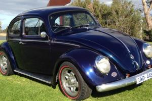 Volkswagon Beetle 1964 in VIC Photo