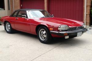 Jaguar : XJS CABRILOET