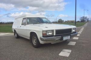 1983 Holden WB Windowless Panelvan in VIC