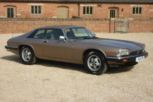 JAGUAR XJS V12 HE COUPE - 1984 - 19,000 MILES FROM NEW FSH - PRISTINE CONDITION Photo