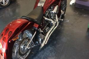 Harley Photo