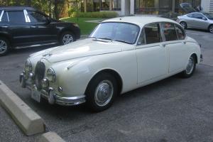 Jaguar : Other Photo