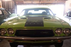 Dodge : Challenger rt