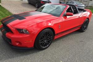 Ford : Mustang GT500