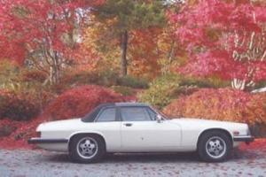 Jaguar : XJS Cabriolet
