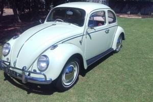 VW Beetle 1962