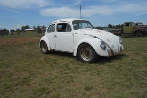Volkswagen Beetle 1964 in NSW