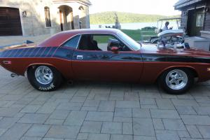 Dodge: Challenger coupe