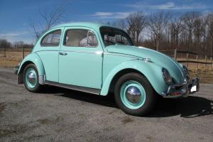 Volkswagen: Beetle - Classic