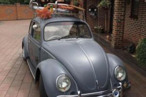 Volkswagen 1300 Beetle - 1969 Photo