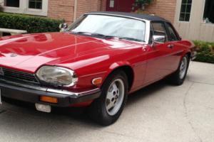Jaguar: XJS XJS CABRIOLET