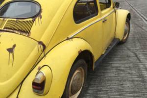 Rare RHD VW 1955 Oval Deluxe model Classic Beetle
