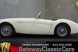 1956 Austin Healey Convertible Photo