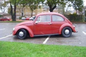VW Beetle 1971