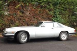 Jaguar xjs 3.6