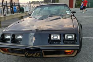 1981 Pontiac Trans Am Special Edition