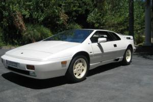 1988 Lotus Esprit Esprit Turbo SE Anniversary Edition Photo