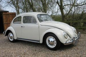 Vw Beetle -early 1961 -1200 -restored