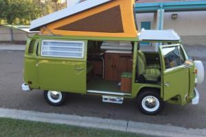 1977 Volkswagen Bus/Vanagon