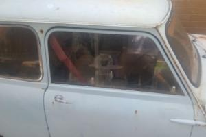 Mini Minor 1960`S