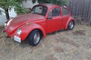 1972 Volkswagen Beetle - Classic Photo