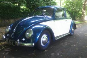1958 VOLKSWAGEN BEETLE BLUE/CREAM 1200