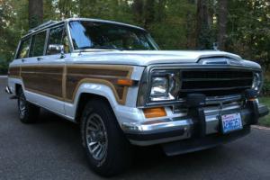 1989 Jeep Wagoneer Photo