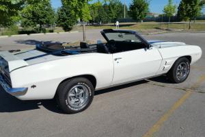 Pontiac: Firebird TRANS AM