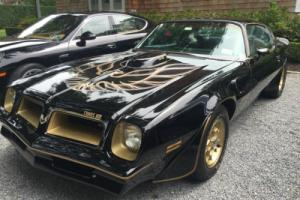 1976 Pontiac Trans Am 50th Anniversary Special Edition