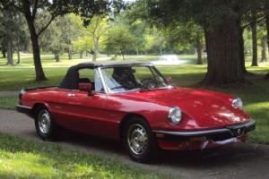 1987 Alfa Romeo Spider Graduate