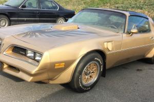 Pontiac: Trans Am Gold Special Edition