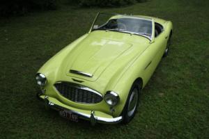1958 Austin Healey 100-6 Photo