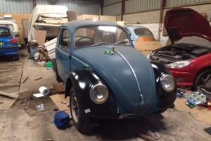 Beetle 1966 project