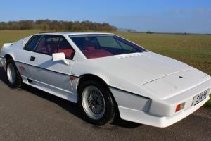 Lotus Esprit Turbo, 1985. Monaco White with contrasting full red leather.  Photo