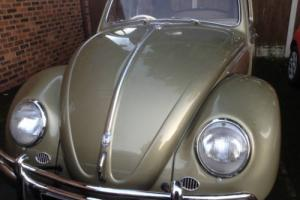 VW BEETLE 1957 **FULLY RECOMISIONED** like a brand new 59 yr old car**