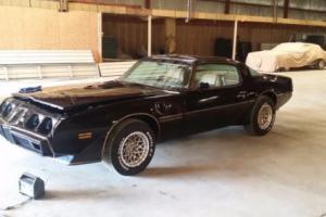1981 Pontiac Trans Am Special edition Bandit
