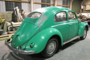 1955 VW Oval beetle. Early heart tail light grooved door model. Great project