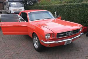 1965 FORD Mustang C289 4sp coupe