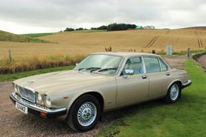 Jaguar XJ6 Series III , VERY low miles, long MOT, History