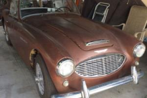 1958 Austin Healey Other Photo