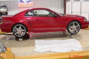 2001 Ford Mustang SVT