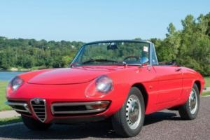 1967 Alfa Romeo Spider Spider