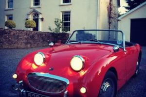 1959 AUSTIN HEALEY 'Frogeye' Sprite Restored and with Works Hard Top Photo