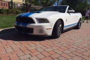 2010 Ford Mustang 2dr Convertible Shelby GT500