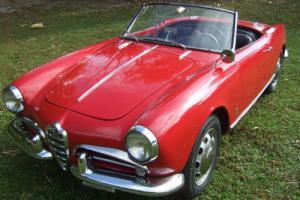 1958 Alfa Romeo 4C