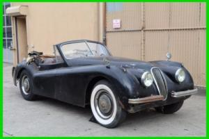 1953 Jaguar XK DHC Photo