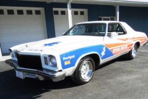 1975 Buick Regal Photo