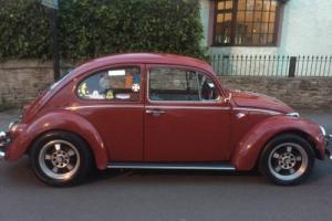 vw classic beetle 1970