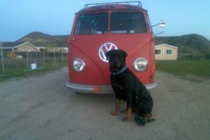 1953 Volkswagen Bus/Vanagon Barndoor 23 window