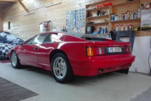 Lotus Esprit in top condition from collector for collectors full maintenance doc